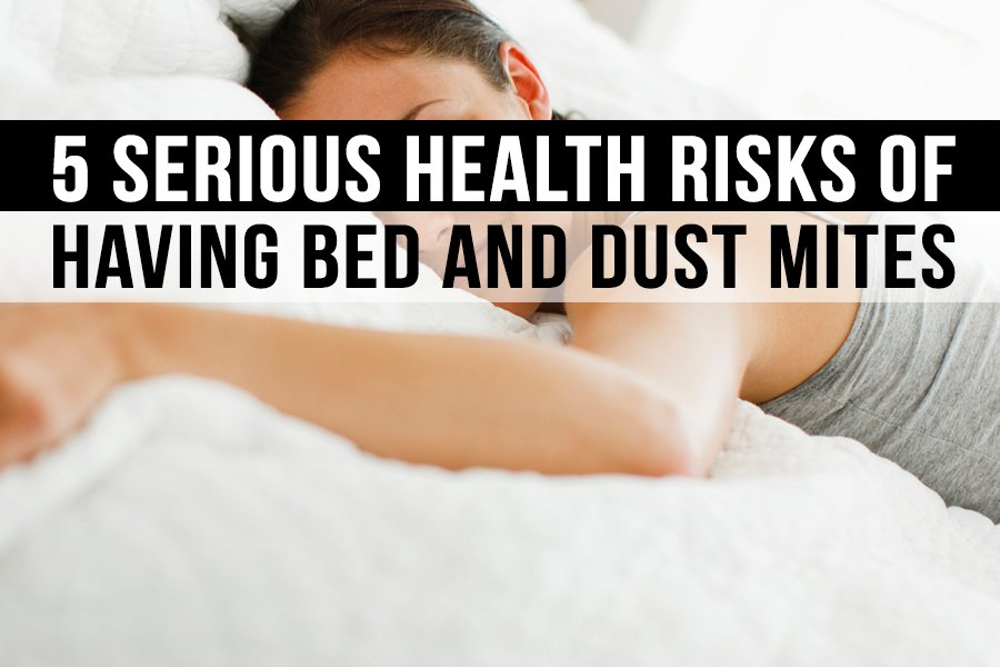 5 Serious Health Risks of Having Bed and Dust Mites